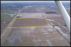 SumaGroulx Corn field on Brown Road and Colberg Lane, facing Farley from Colberg Lane.